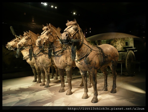 20101113_130114_ShanXiXiAnTerracottaWarriors.JPG