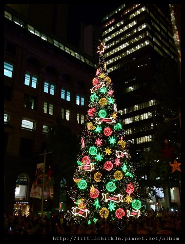 20121129_077_MartinPlaceTreeLighting.JPG