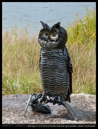 20150405_145817_LakeLightSculptureJindabyne.JPG