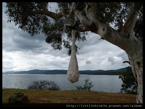 20150405_152147_LakeLightSculptureJindabyne.JPG