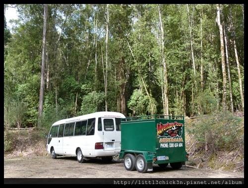 20111223_075950_0028_TasmaniaMountFieldNationalPark.JPG