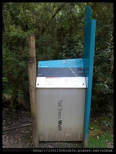20111223_080048_0031_TasmaniaMountFieldNationalPark.JPG