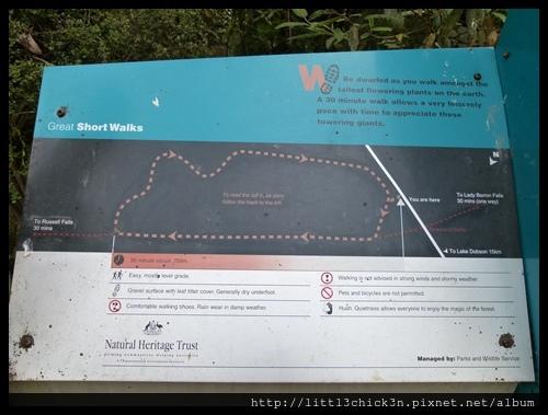 20111223_080056_0032_TasmaniaMountFieldNationalPark.JPG