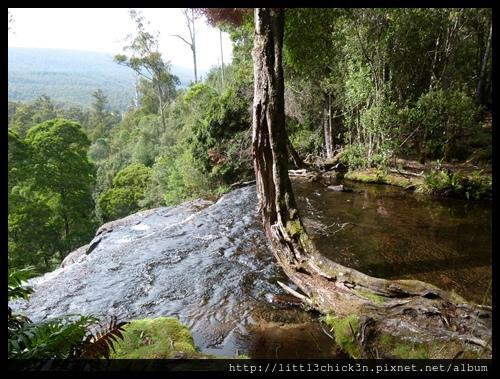 20111223_082730_0042_TasmaniaMountFieldNationalPark.JPG