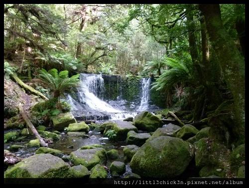 20111223_082953_0046_TasmaniaMountFieldNationalPark.JPG