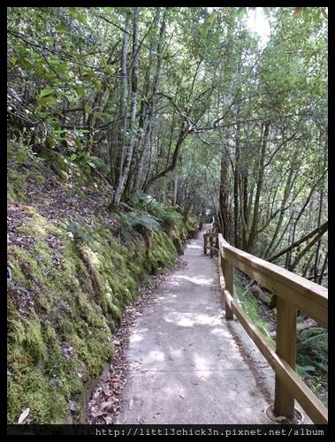 20111223_083308_0049_TasmaniaMountFieldNationalPark.JPG