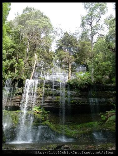 20111223_084132_0055_TasmaniaMountFieldNationalPark.JPG