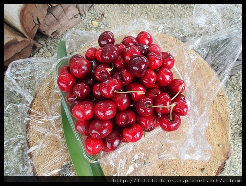 20151212_122755_SevilleFarmCherryPicking.JPG