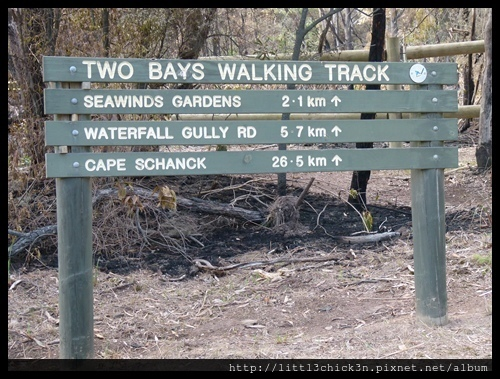 20160409_105406_MorningtonPeninsula2BaysWalk26Km.JPG
