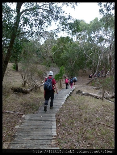 20160409_112201_MorningtonPeninsula2BaysWalk26Km.JPG