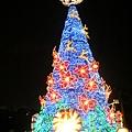 哦!!大聖誕樹