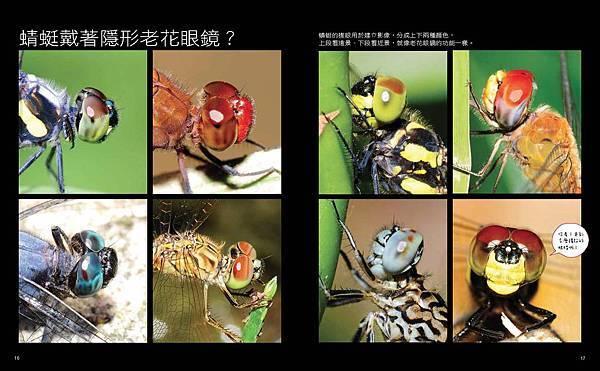 啊蜻蜓-final-網路用_頁面_11.jpg