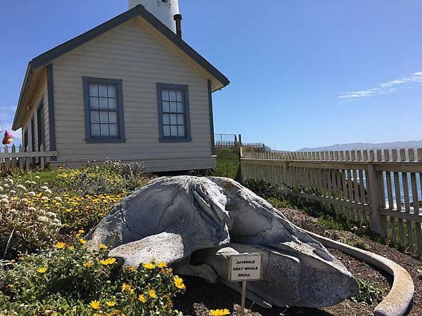 1. Pigeon Point Light Station (25).jpg