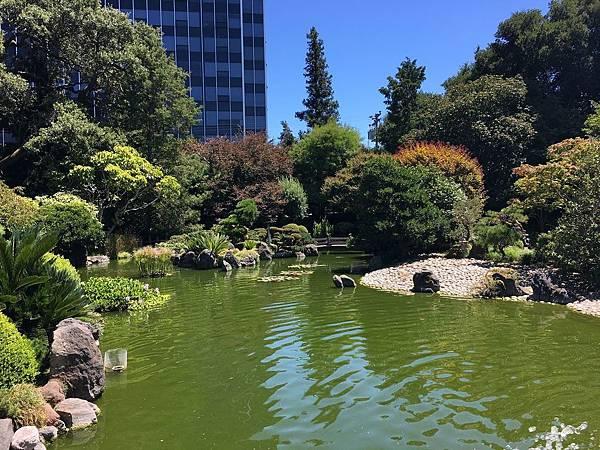 San Mateo Japanese Garden (1).jpg