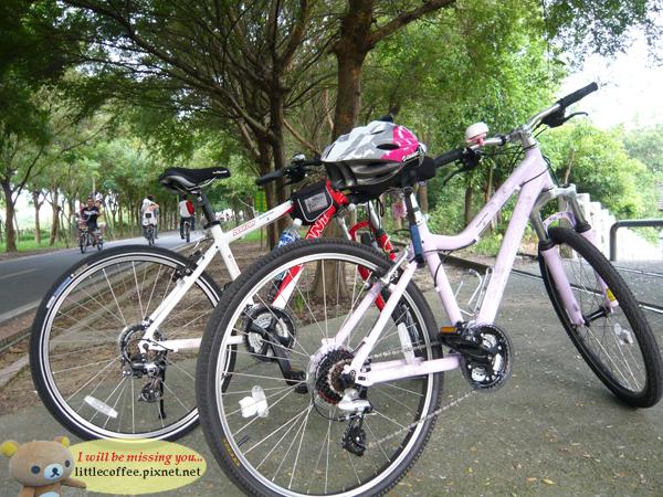 我們的自行車