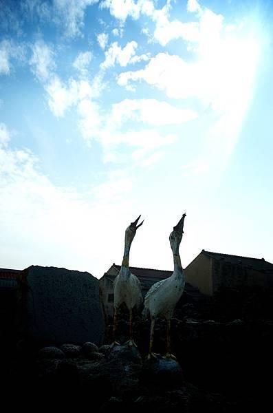 澎湖照片_PAUL_0046.jpg