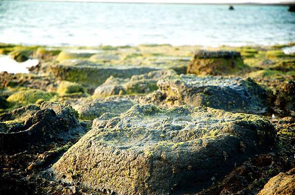澎湖照片_PAUL_0617.jpg