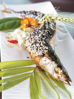 蒲汁秋刀魚.jpg