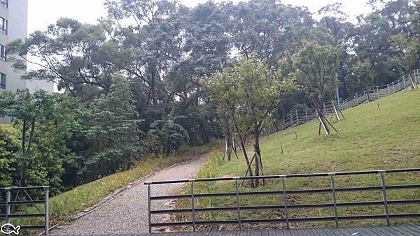 2015蘆竹區營盤環保公園看高鐵長溜滑梯7.jpg