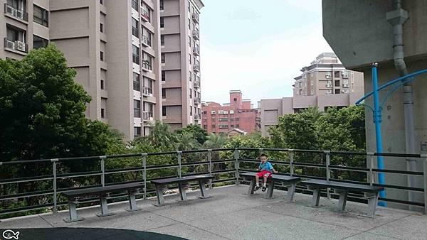 2015蘆竹區營盤環保公園看高鐵長溜滑梯8.jpg