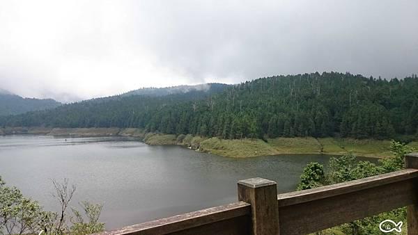 翠峰湖宜蘭太平山36.jpg