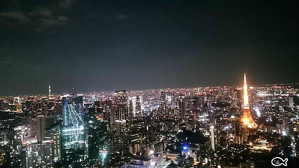 東京六本木夜景51.jpg