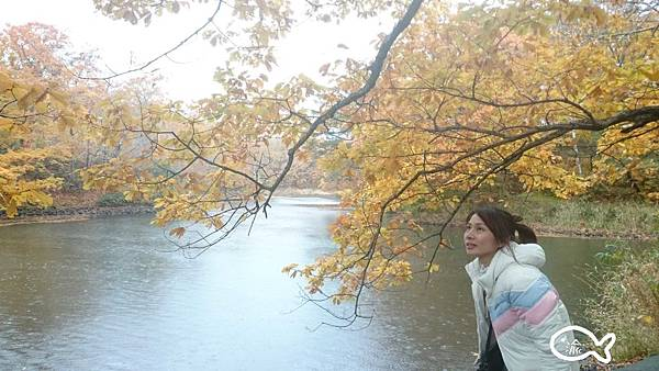北海道D2大小沼72.jpg