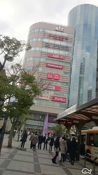 東京D2阿卡將003.jpg