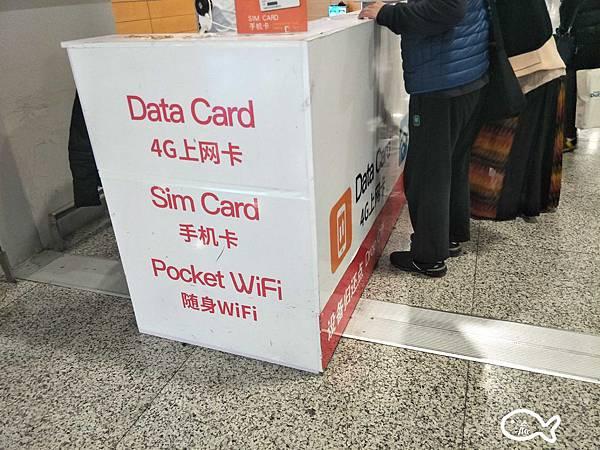 上海自由行031.jpg
