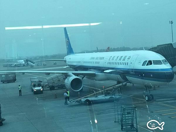 上海自由行D153.jpg