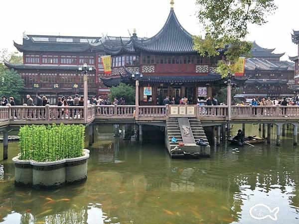 上海自由行第三天069.jpg