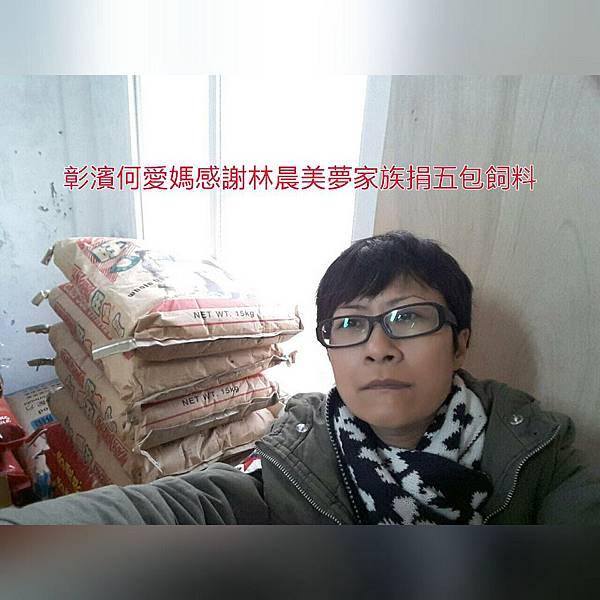 彰濱何愛媽感謝林晨美夢家族捐五包已分飼料_9165.jpg
