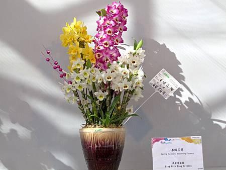 2012台灣蘭展
