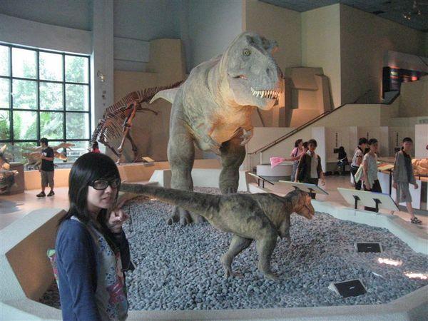 這真的是博物館驚魂記