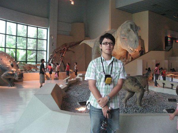 好逼真的恐龍