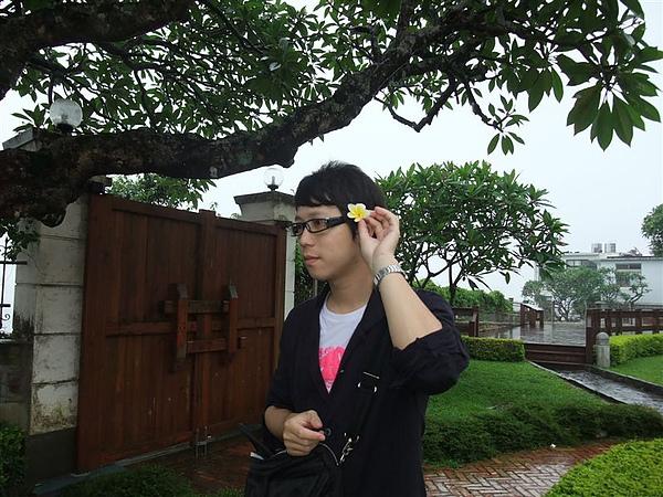 下雨天一朵朵的掉落