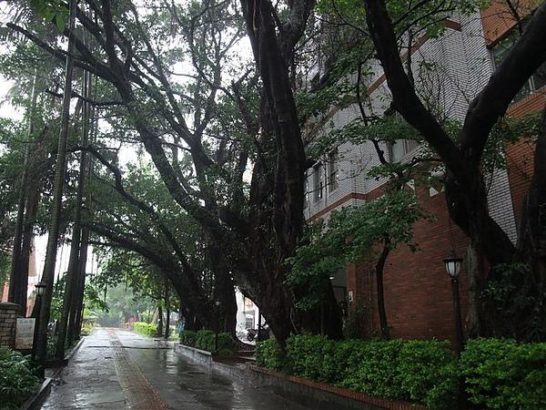 走路到淡江中學