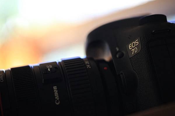 20111112 canon 7D_13.JPG