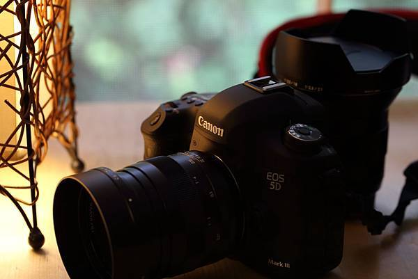 Canon 1DX_20