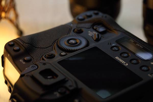 Canon 1DX_10
