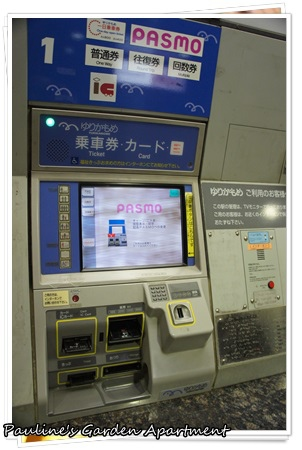 DSC07380.JPG