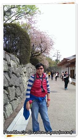 IMAG8129.jpg