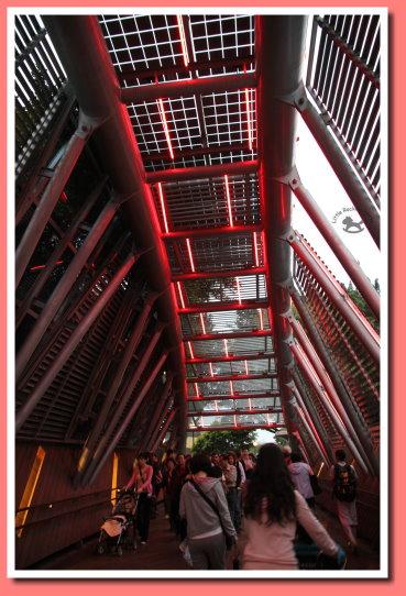 花之隧道 1.jpg