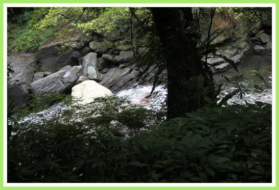 登山隊活動(滿月圓) 4.jpg