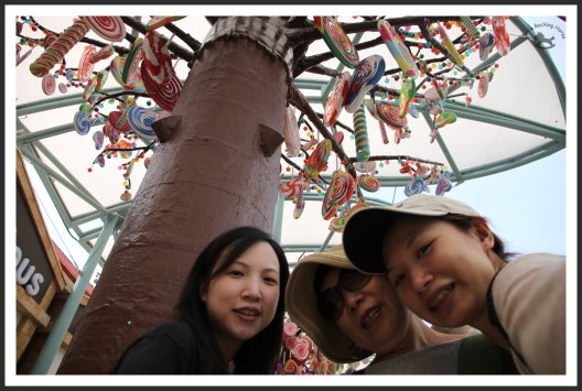新加坡增胖之旅 28.jpg