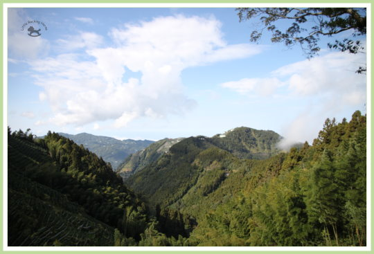 忘憂森林探路 13.jpg