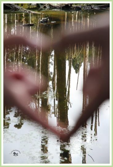 忘憂森林探路 40.jpg