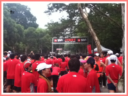 101.04.15 路跑賽-The North Face 10K-2