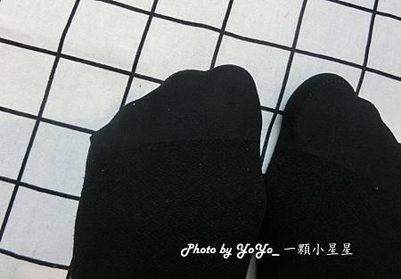 CIMG2558 (Copy)_副本.jpg