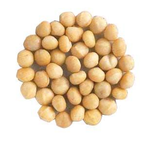 macadamia-nuts-12571.jpg
